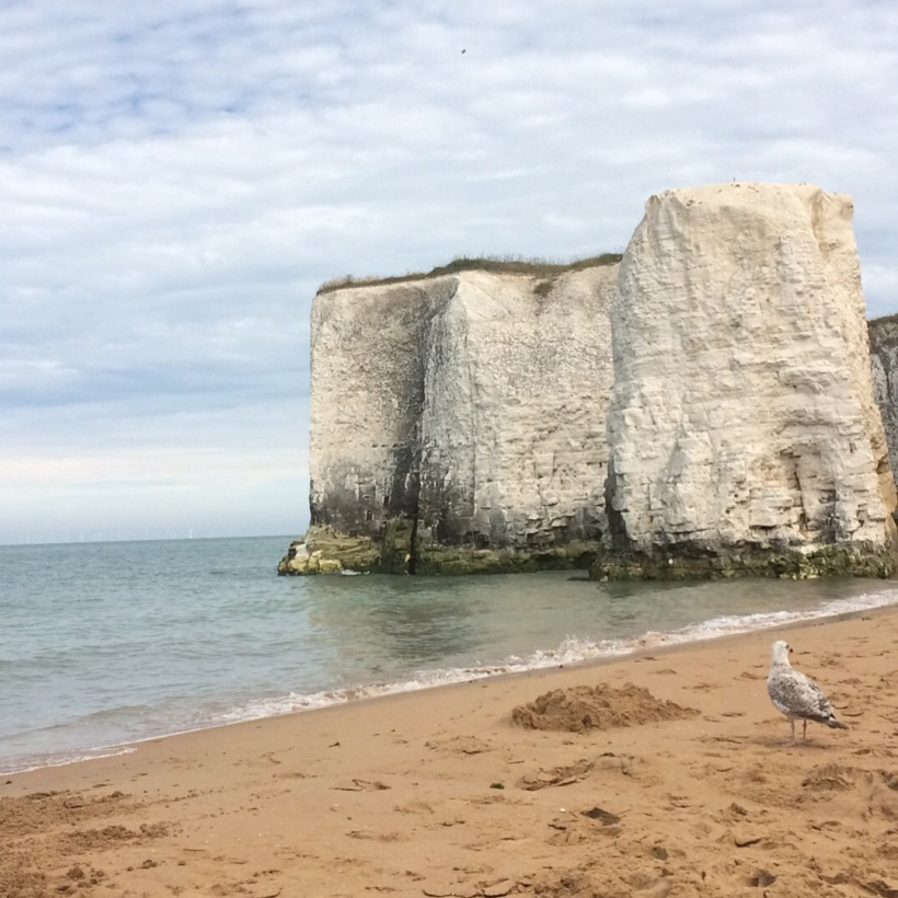 cliffs-botany-bay